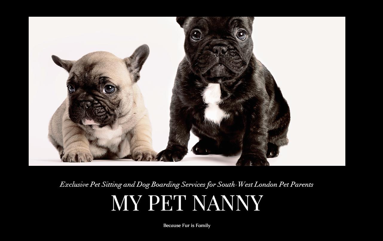 My Pet Nanny