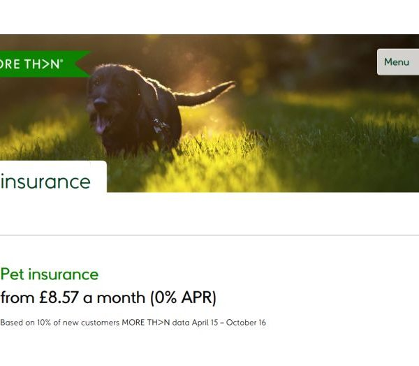 MORETHAN pet insurance