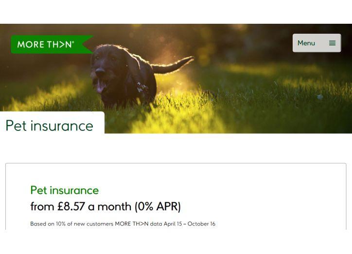 MORETHAN pet insurance