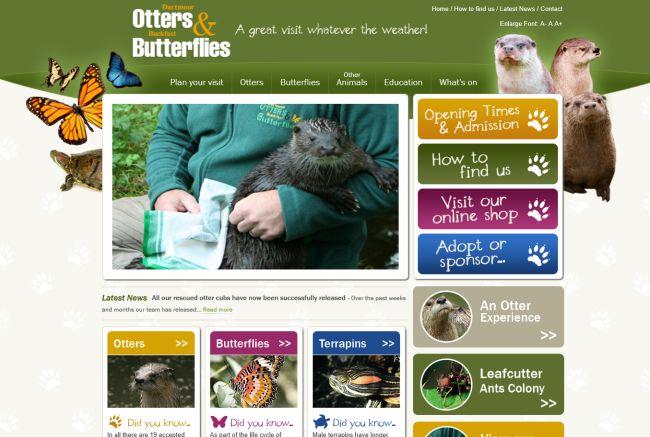 Buckfast Butterflies & Otter Sanctuary