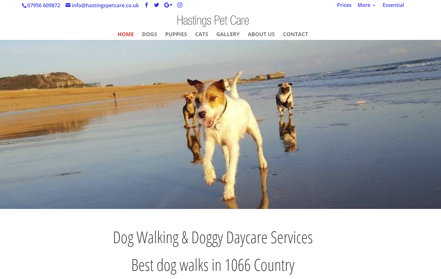 Hastings Pet Care